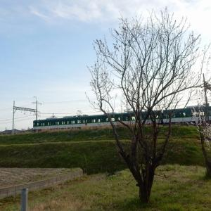 京阪・交野線2
