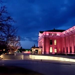 夜桜、岡崎公園・高瀬川
