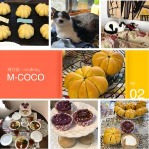 M-COCO3月リクエストレッスン『ふんわりかぼちゃぱん』