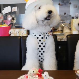 5歳のお誕生日ケーキ。