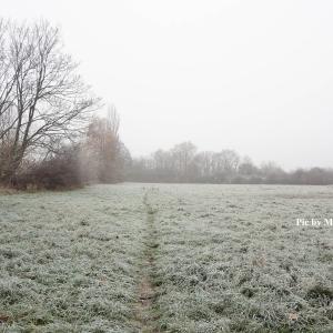 冬用あたたか保温アイテム in ドイツ
