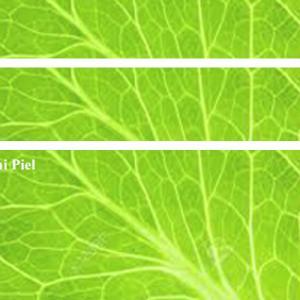 早割10/20(水)まで【 プラーナ・エネルギ-講座〔初級〕自己エネルギーの調整 11/21】