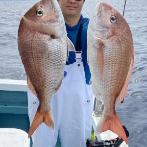 久しぶりの真鯛釣り