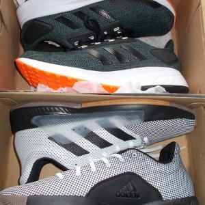 散歩用の靴を買いにアウトレット行ってきた。
