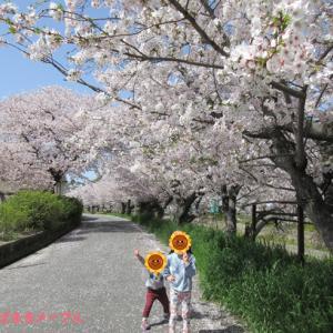 お花見2021