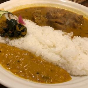 南インドカレー日本風味