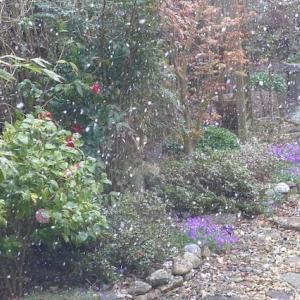 4月に雪が降ったので