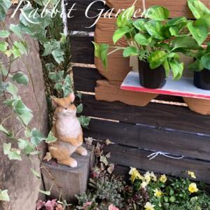 京終RabbitGarden オープニング