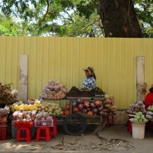 【カンボジア2020_4】Kampong Thomにて、世界遺産「Sambor Prei Kuk」