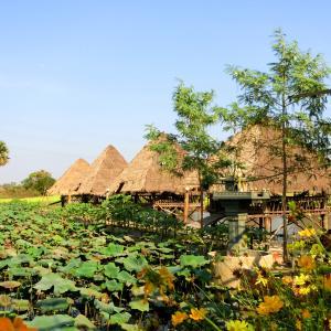 【カンボジア2020_8】トンレサップ湖ディナークルーズ
