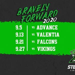 2020 Stealers