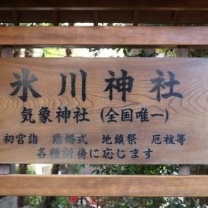 新春てくてく(1)高円寺氷川神社 。。。