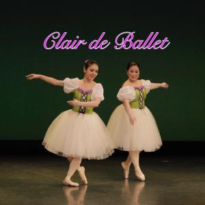 バレエを楽しんで