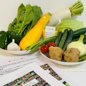 夏の疲れは運気ダウンに…産地直送の新鮮な夏野菜で不足した運気を補う