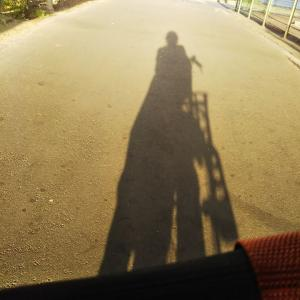 私と電動自転車