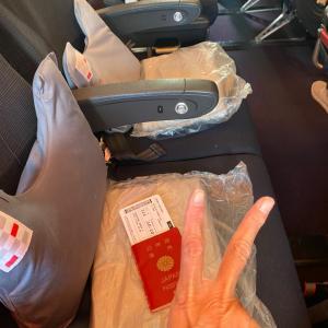 (2021年 海外渡航 ③ ) JAL国際線 機内より