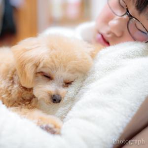 JAPAN PHOTO 2019 秋冬フォトコンテスト ネイチャー・生き物部門 佳作