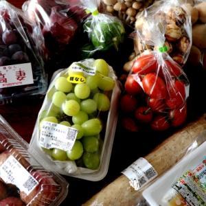 僕、通るにょ&野菜と果物・・♪