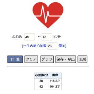心拍数と寿命