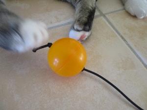 DIY 猫のオモチャ
