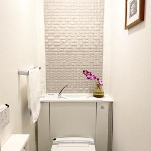 トイレの換気扇フィルターが!くすみ肌