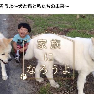 NHK BSプレミアム「家族になろうよ」出演中止!