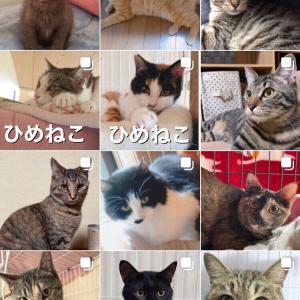 4/21(水)事務所休みのお知らせ