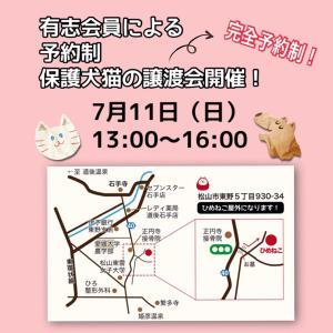 保護犬猫の譲渡会ご来場予約申込延長!
