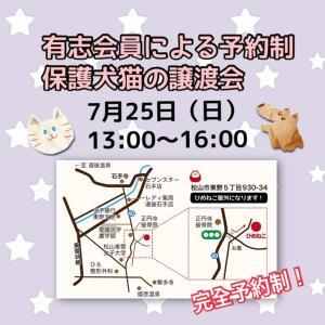 有志会員による予約制 保護犬猫の譲渡会/参加犬猫紹介