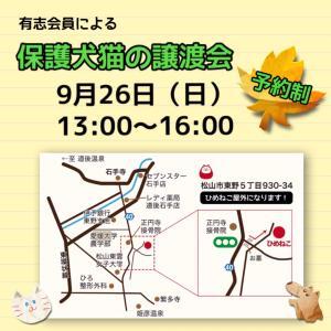 9/26 保護犬猫の譲渡会だよ!
