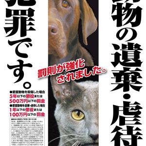 「動物愛護法」改正を分かりやすく抜粋
