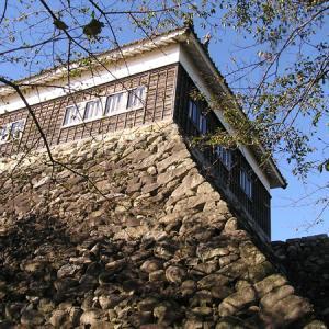 レアなお城の写真集