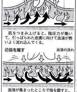肌をつまむポンプ効果(水をくみ上げる)