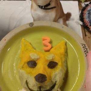 3歳になりました。嫁のサツマイモとカボチャの手作りケーキ