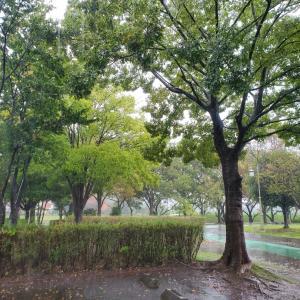 ☆20191022☔雨ラン☆