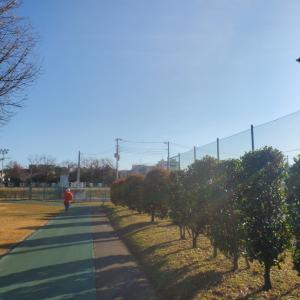 ☆2020/01/03箱根駅伝復路☆