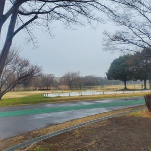 ☆2020/02/16雨☔ラン☆