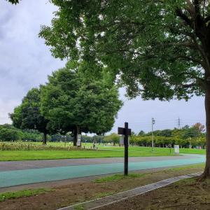 ☆2020/09/20(日)雨☔が降る前に☆