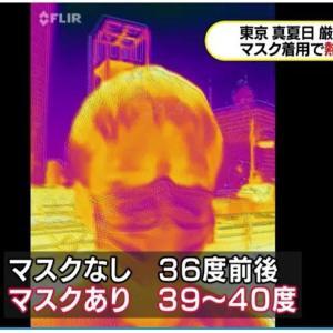 マスクを捨てようーーーマスクは、口元の温度を40℃に上げる、心拍数や呼吸数、血中二酸化炭素濃度、体感温度を上げる。