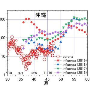 沖縄では、一年中インフルエンザ?ーーー今年はインフルエンザがゼロで、代わりに「コロナ」が、例年通りの推移