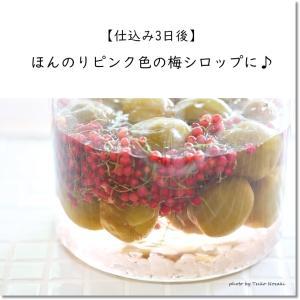 【梅&スグリの簡単シロップ作り3日後】シロップの色に変化が!