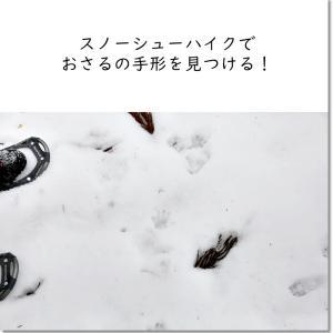 スノーシューハイクでさるの手形を見つける!