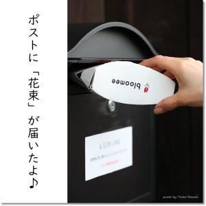 【bloomee体験レポート】ポストに花束が届いた!!