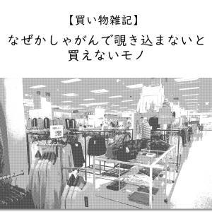 【買い物雑記】しゃがんで覗き込まないと買えないモノ