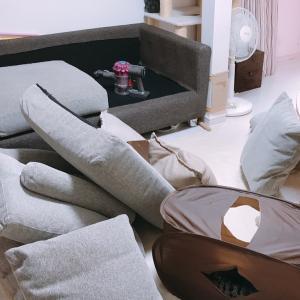 ソファーの掃除は必ずおじゃま虫が来る
