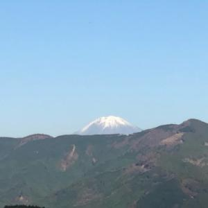 静岡県 vol.6