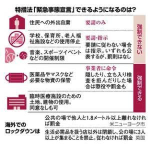 緊急事態宣言でどうする?免疫についてシンプルに解説!