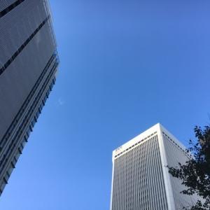 2019年11月14日 葉山 赤坂