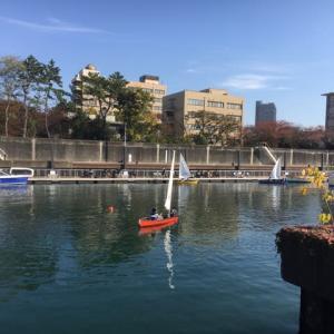 2020年11月15日 東京海洋大学海洋工学部