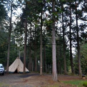 サイト面積100㎡超ばかり・贅沢空間の通年営業キャンプ場が都留に実在した